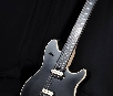 EVH USA STEALTH
