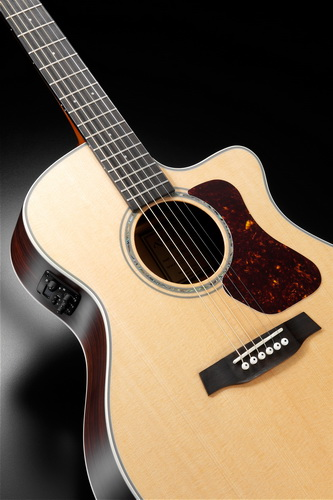 Walden Guitars G700CE Grand Auditorium